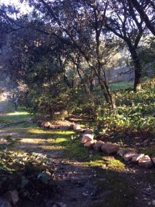 El Casar Semana Santa Yoga naturaleza